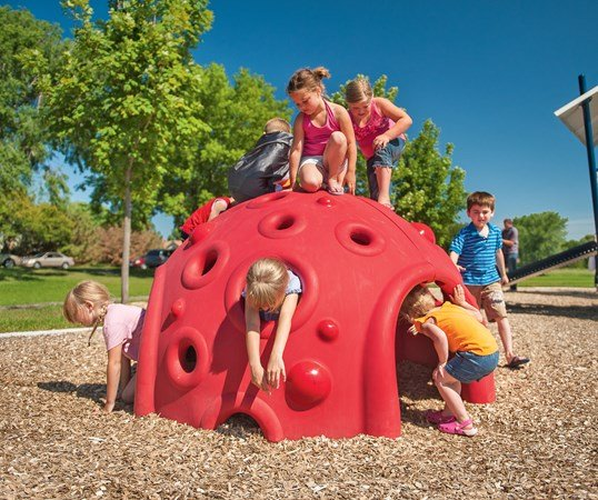 Cozy Dome Playground Climber Landscape Structures
