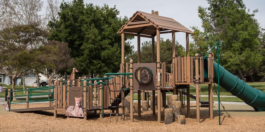Coy Park San Jose California Inclusive Safari Themed